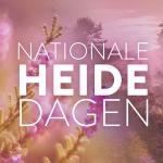 Nationale heidedagen