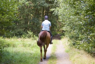 Te paard door het Nationaal Park