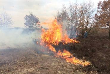 Brandgevaar: Code rood