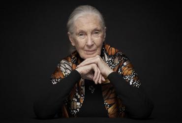 Jane Goodall komt naar Limburg